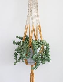 2016 plant hanger.jpg